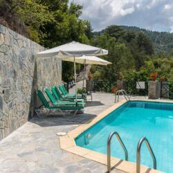 Themis House In Lemithou Pool Side